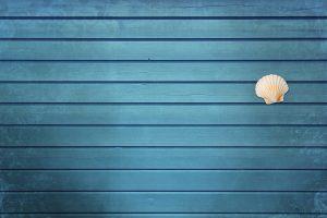 blauer Hintergrund mit Muschel